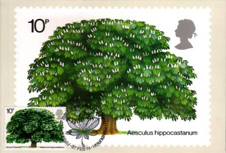 view larger image for PHQ No.5F (1974) - British Trees single<br/>