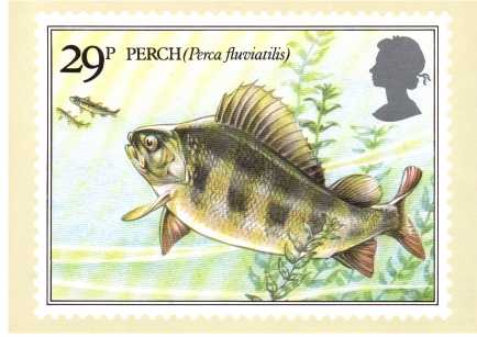 view larger image for PHQ No.65 (1983) - British Fishes<br/>Set of four