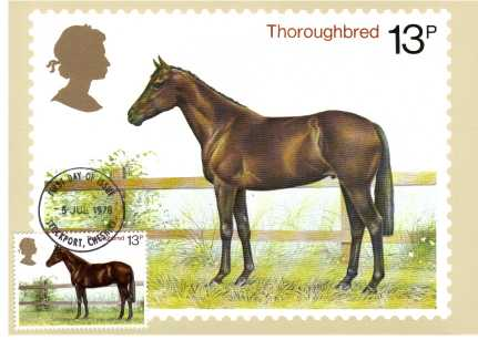view larger image for PHQ No.30F (1978) - British Horses set of four  - STOCKPORT FDI cancel - pencil address on back