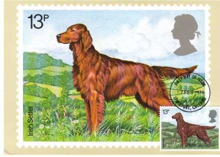 view larger image for PHQ No.33F (1979) - Dogs set of four - STOCKPORT FDI cancel - pencil address on back