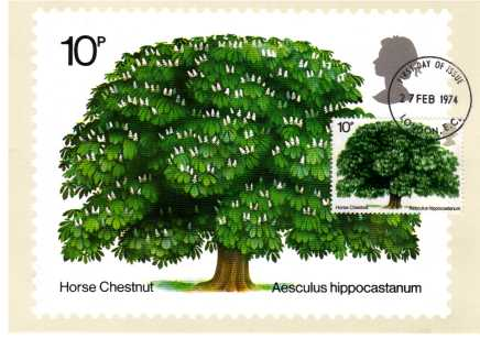 view larger image for PHQ No.5F (1974) - British Trees single<br/>Neat written address - LONDON EC FDI cancel on front