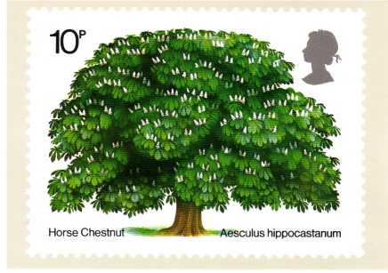 view larger image for PHQ No.5 (1974) - British Trees<br/>Single card complete set of one