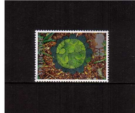view larger image for SG 1856 (1995) - 35p - Four Seasons - Springtime -     Hazel leaves