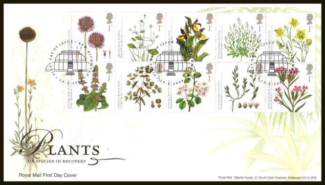 view larger back view image for Plants block of ten