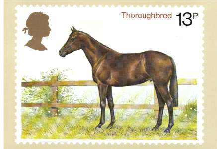 view larger image for PHQ No.30B (1978) - Horses set of four cards<br/>